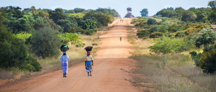 #africandustsafaris